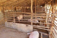 Suivi et visite des bénéficiaires dans le Boeny